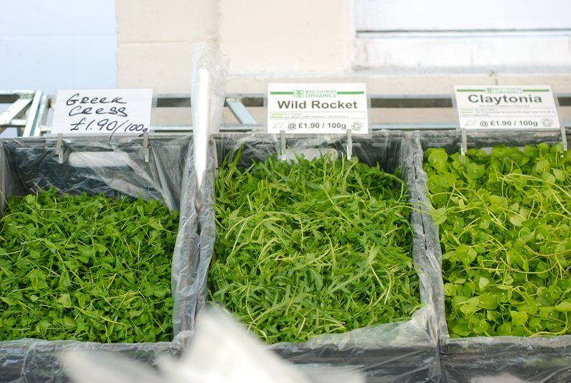 Baby greens at Barnes farmer's market