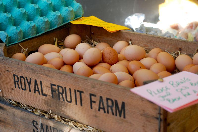Eggs at Barnes