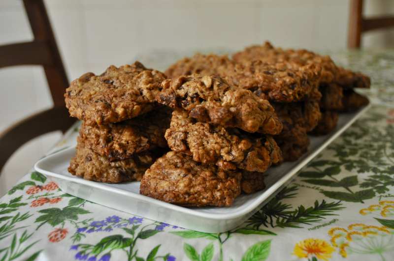 Teff Oatmeal Chocolate Chip Cookies with Walnuts and Cranberries